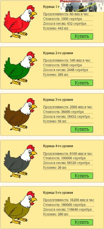 Chickens Farm курочки